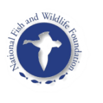 national_fish_and_wildlife_foundation