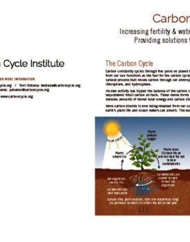 thumbnail of CCI Carbon Farming Fact Sheet