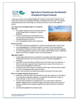thumbnail of Grassland Project Protocol Fact Sheet